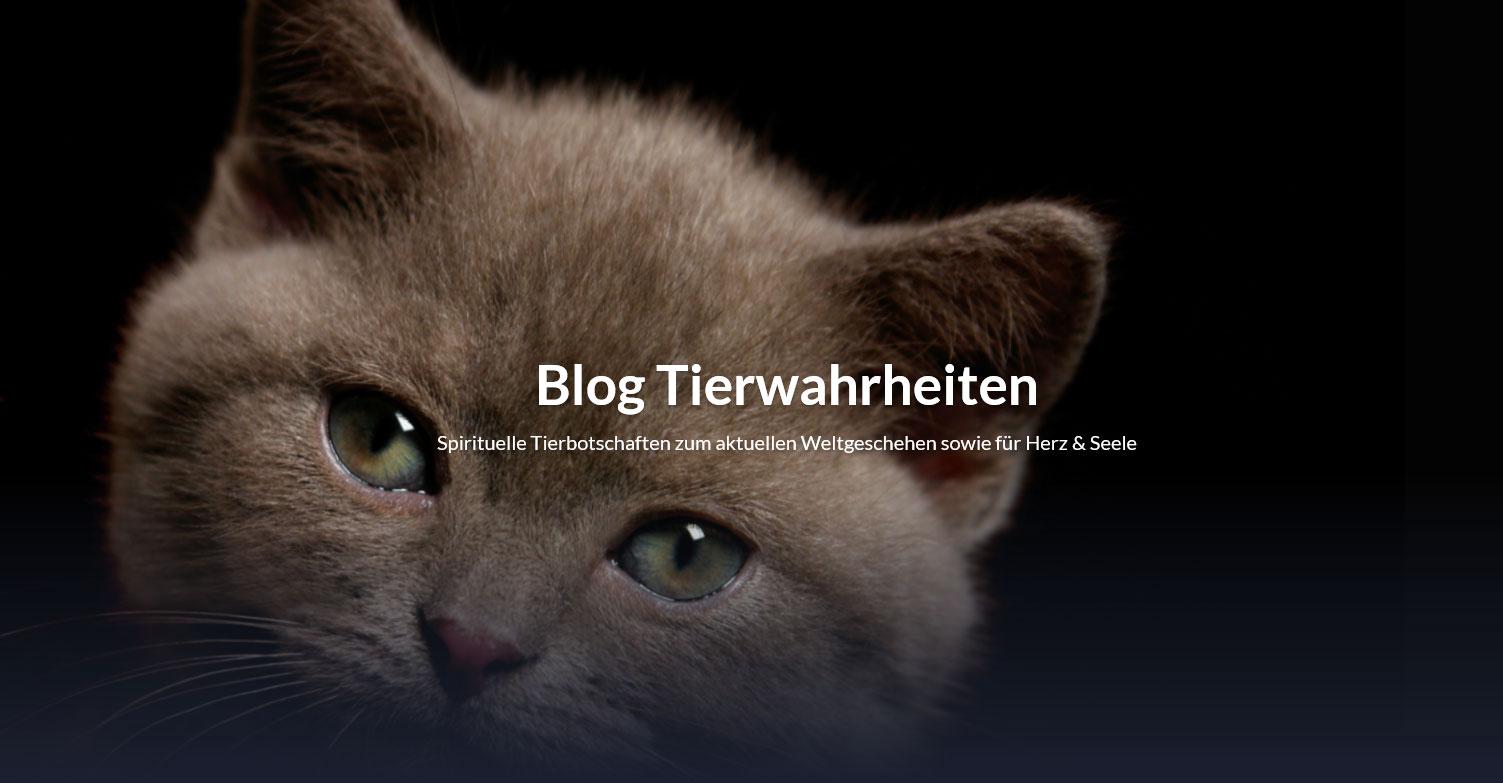 Bild Blogstartseite