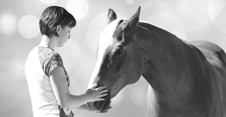 Tierkommuniation mit Pferd
