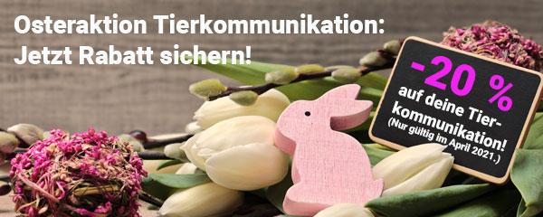 Osteraktion Tierkommunikation